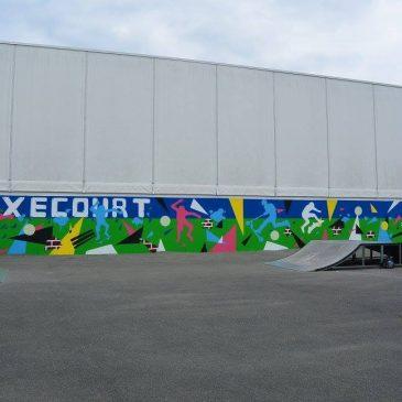 Embellissement du mur du Skate Park