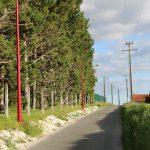 candelabre chemin vert du guide (2)