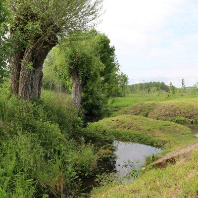 Marais Flixecourt